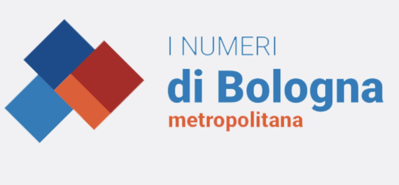I numeri di Bologna metropolitana